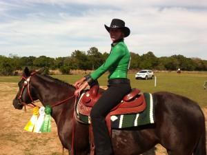 Horse Show 334